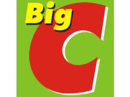bigconlinepayment