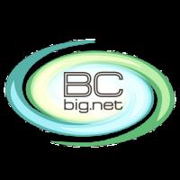 bc-big-net-kievskaia-obl