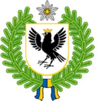 dms-ivano-frankivska-obl