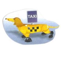 taksi-taksa-zaporozhe