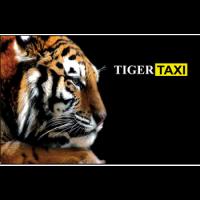 taksi-tiger-kiev
